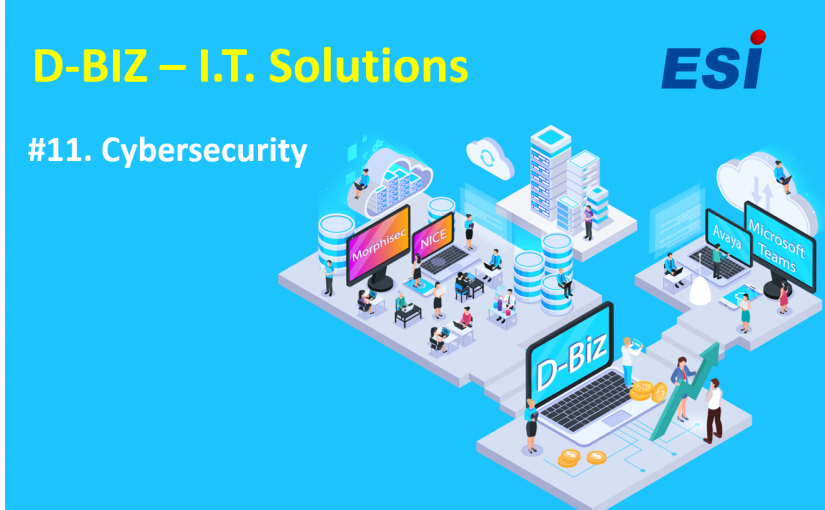 D-Biz | Cat. 11 -Cybersecurity Solutions