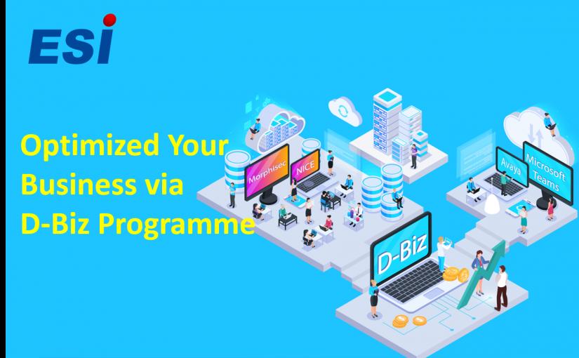 D-Biz Programme